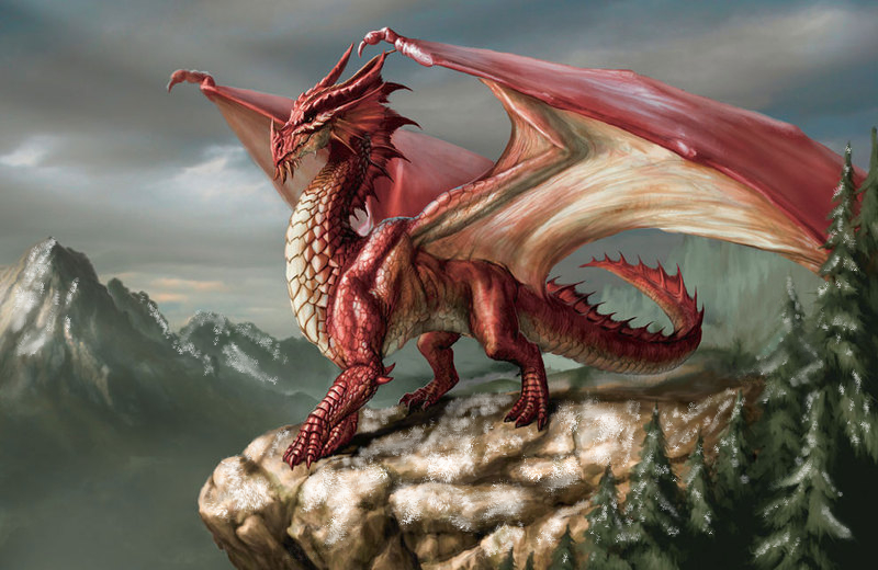 Wendall the Dragon